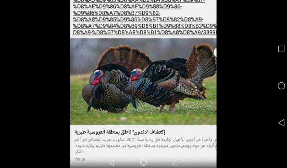 Screenshot_2021-02-25-23-28-24.jpeg